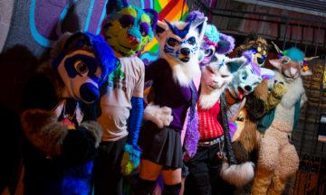 Fluff Party November 2021